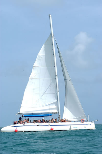 Yachting, catamaran, boat trips. Picture 5
