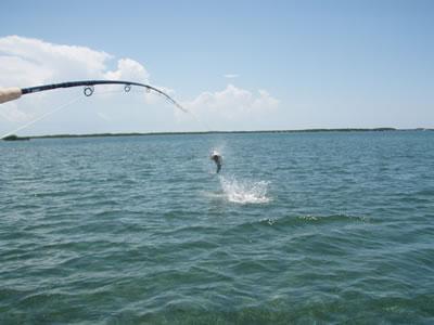 Fishing Cayo Santa Maria