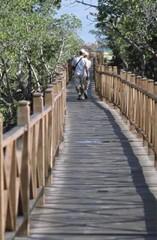 Iberostar Ensenachos Spa Suites Camino a la playa