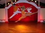 Hotel Brisas del Caribe Show