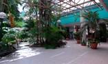 Hotel Kohly inner patio, Habana Hotels