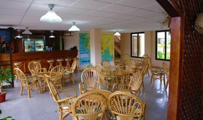 Hotel Los Helechos Bar