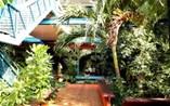 Hotel Playa Caleta View
