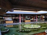 View of the Lobby Hotel Playa Pesquero