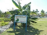 Playa Pesquero Imagen 6