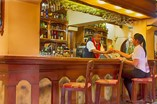 Hotel Pullman Bar