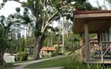 Hotel Rancho San Vicente View