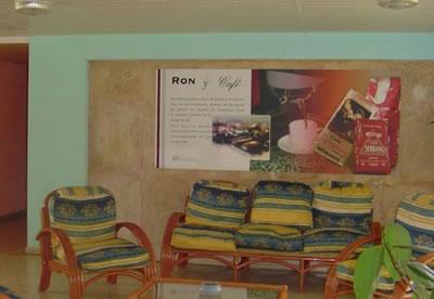 Hotel Varazul Lobby