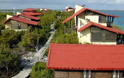 Cabañas del hotel Villa Las Brujas