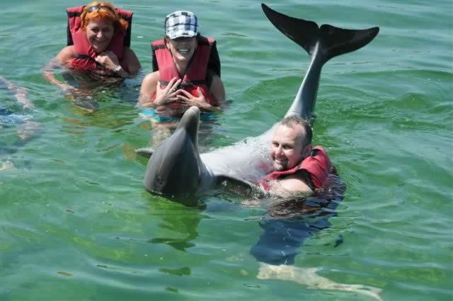 Swim with dolphins, Varadero, Cuba