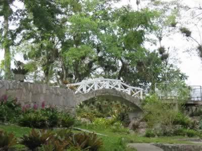 Orquidiario de soroa,Pinar del rio, Cuba