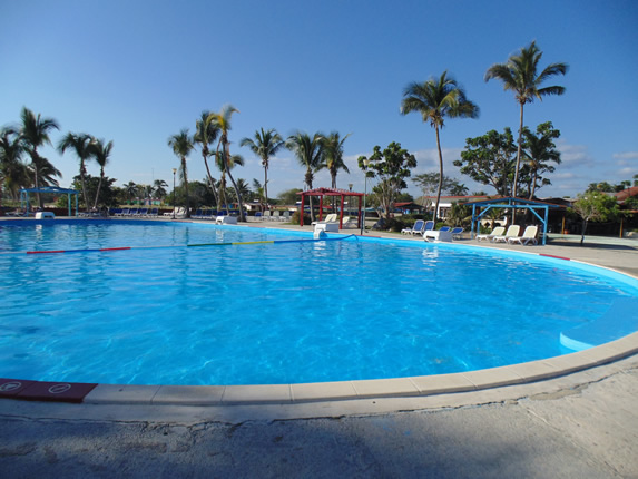 hotel pool surrounded by palm trees
