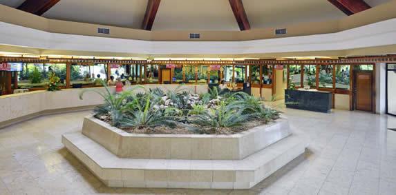 Hotel Sol Palmeras reception