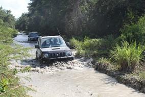 Tour - Jeep Safari