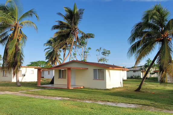 exterior of the cabins surrounded by palm trees