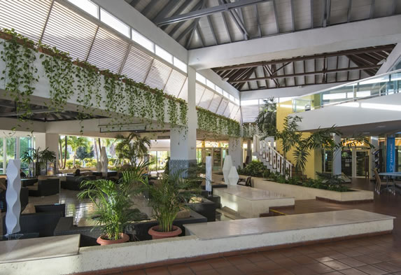 Lobby decorated with plants in the hotel