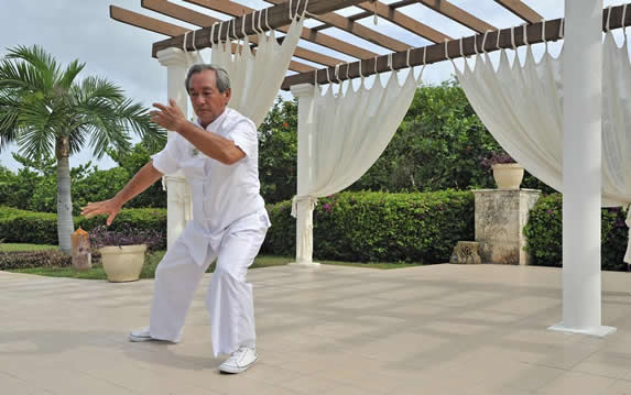 man practicing tai chi in the garden