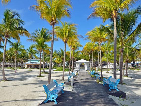 camino de madera rodeado de palmeras y arena