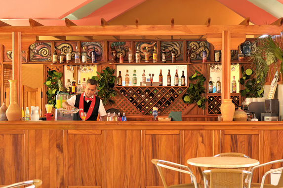 wooden bar with bottles and decorative plants
