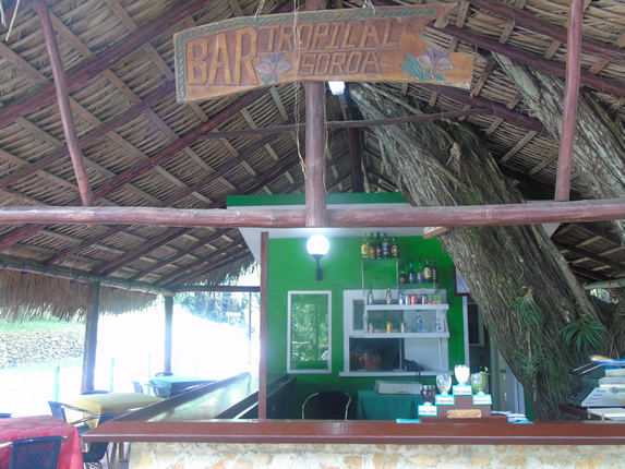 bar with guano roof and wood and stone bar