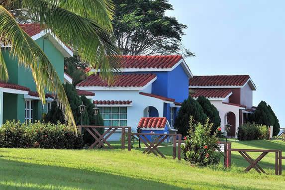 bungalows rodeados de palmeras y vegetación