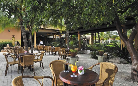 outdoor cafe surrounded by greenery