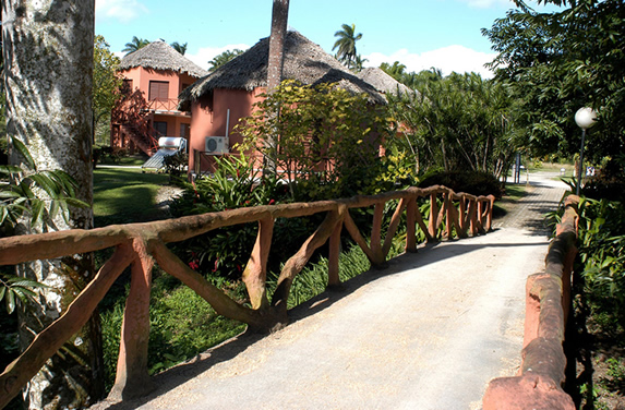 bridge with wooden railings and vegetation