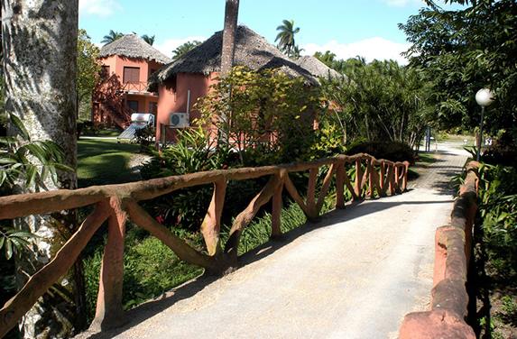 puente con barandas de madera y vegetación