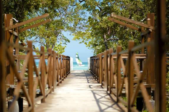 camino de madera hacia la playa con vegetación