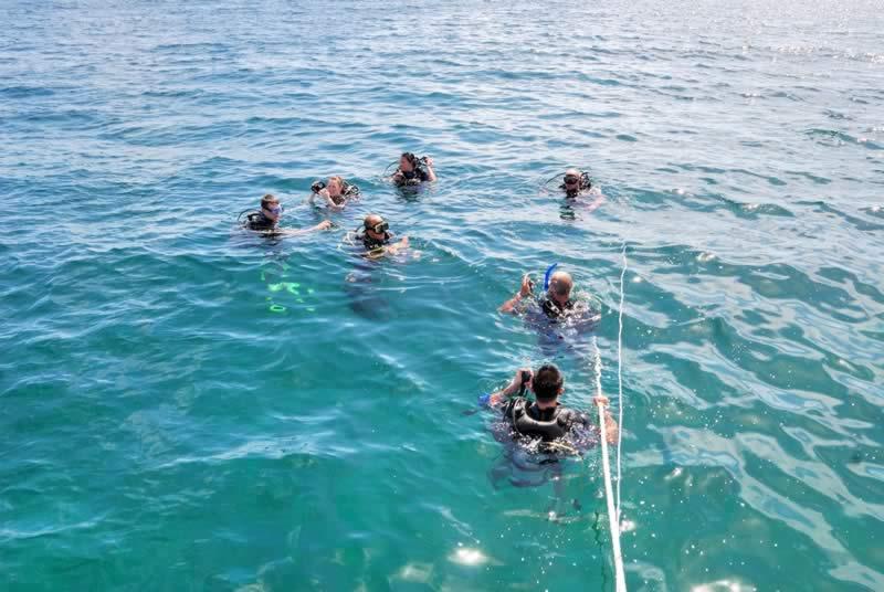 Scuba Diving Picture 2