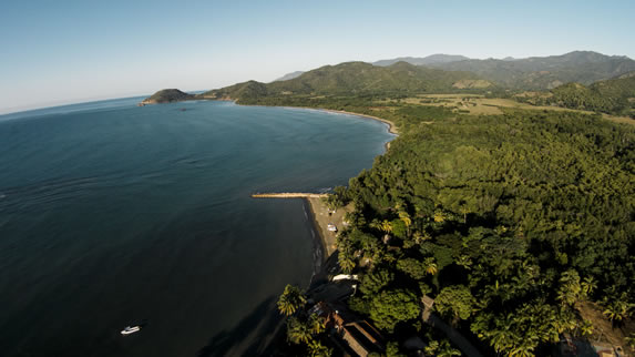 aerial view of the coast surrounded by greenery