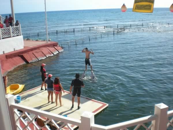 Delfinario, cienfuegos, Cuba