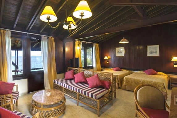 double room with wooden walls and ceiling