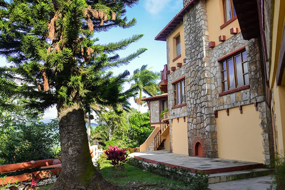 hotel garden with pine trees and greenery