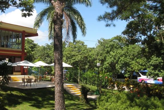 outdoor garden with tables and umbrellas
