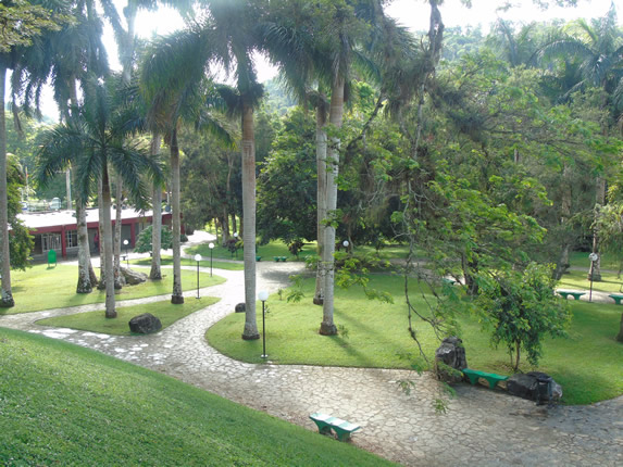 hotel gardens with stone path and benches
