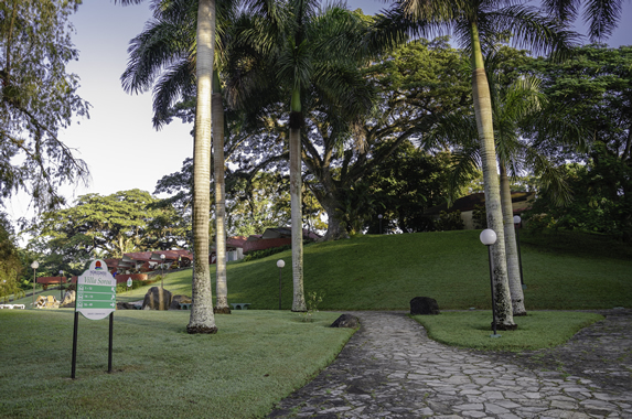 hotel gardens with stone path