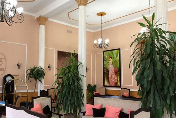 recepción con mobiliario y plantas decorativas