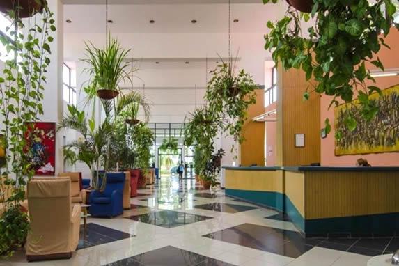lobby con abundantes plantas y colorido mobiliario