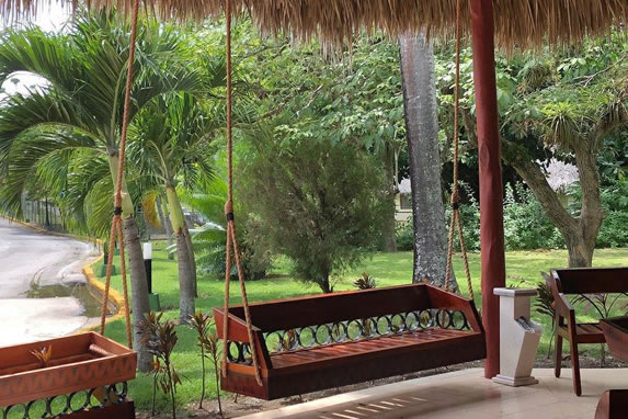 hanging wooden seat surrounded by greenery