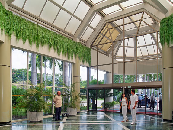 lobby with glass windows and vegetation