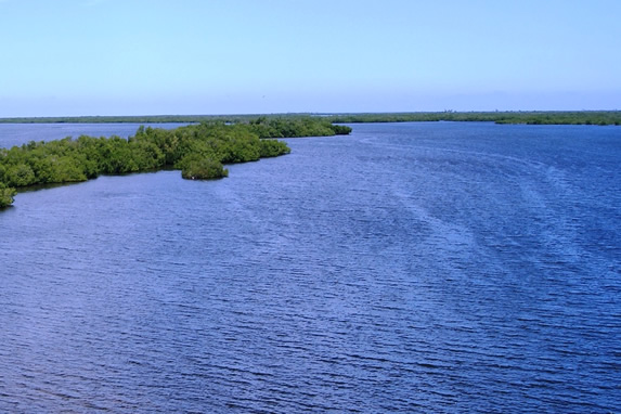 lagoon with abundant mangrove
