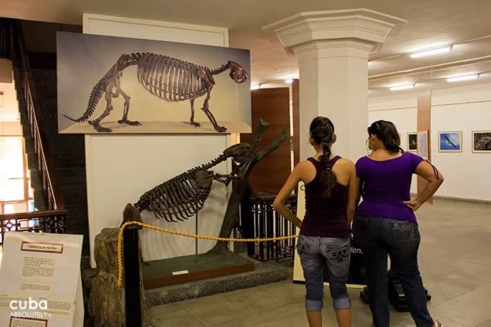 Museo Nacional de Historia Natural, Habana, Cuba