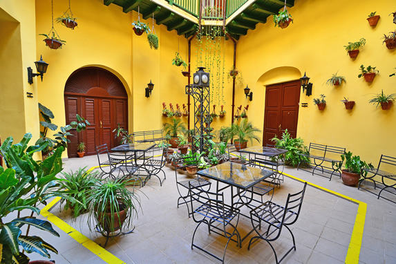 interior patio with greenery and furniture