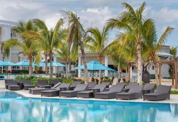 Palmeras que rodean la piscina del hotel