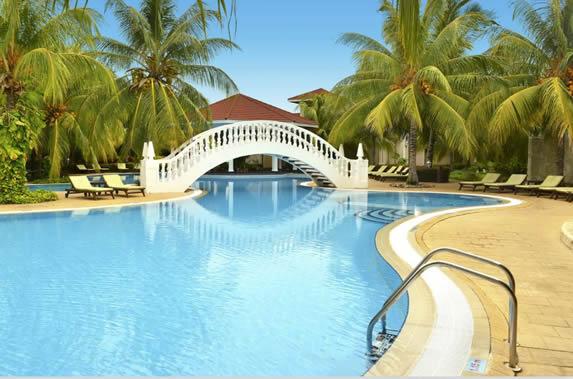 piscina rodeada de palmeras y tumbonas
