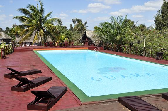 piscina rodeada de vegetación
