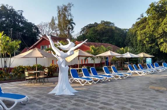 piscina rodeada de tumbonas y sombrillas