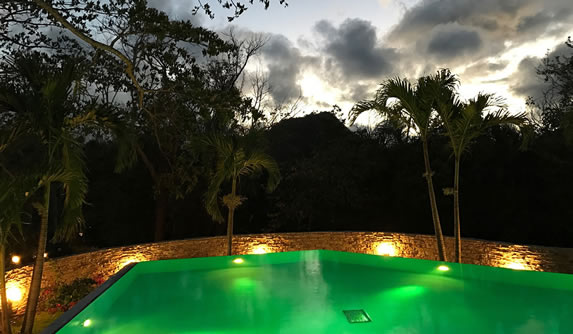 pool at dusk surrounded by greenery