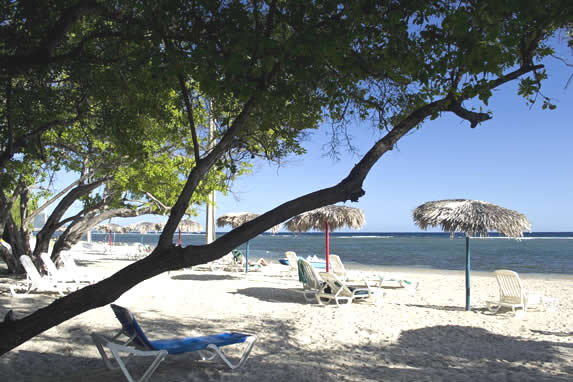 guano beach with sun loungers and umbrellas